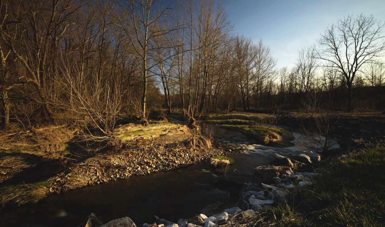 весна, природа, tapeet, maastik, lae, kevad, hommik, landscape, jõgi, loodus, река,