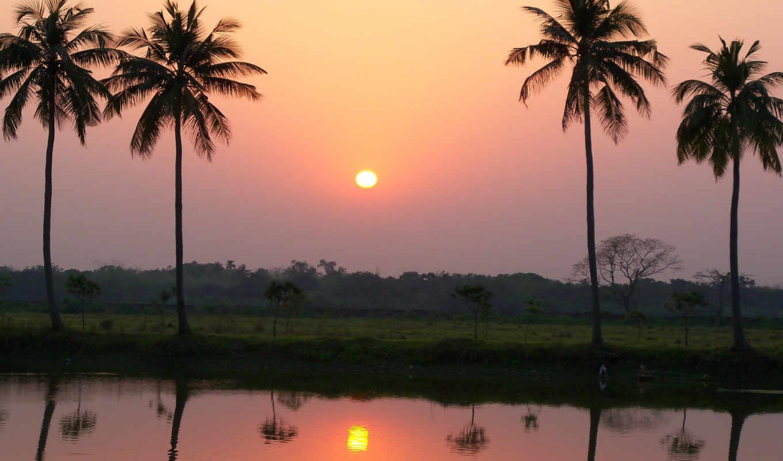 закат, деревня, пальмы, remix, солнца, rising, тв, free, томас, feijk,