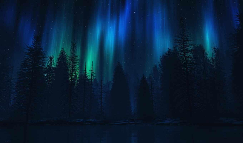 лес, огни, дерево, ночь, aurora, fore, northern, сияние, природа