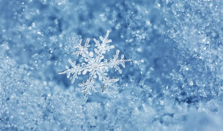 очарование, макро, снег, снежинка,