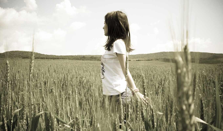 devushki, настроения, девушка, природа, rye, brunette, пшеница,
