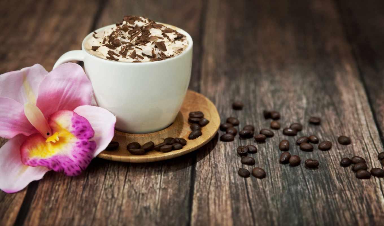 кофе, капучино, шоколад, напиток, пена, чашка, зерна,