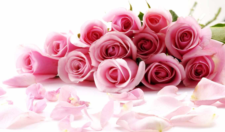 martha, букет, день, цветы, цветов, розы, картинку, открытки, postcard,