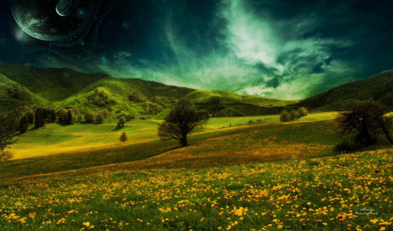 summer, природа, трава, небо, поляна,