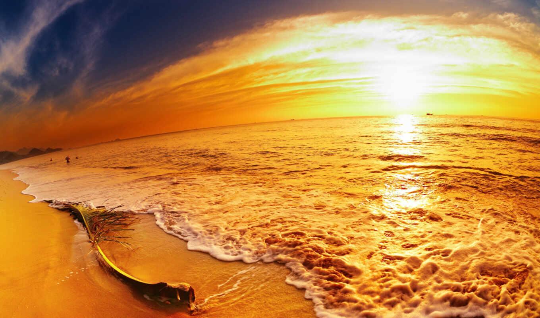 море, ветка, люди, песок, небо, прибой, закат, яркость, картинка, картинку, вода, вид,