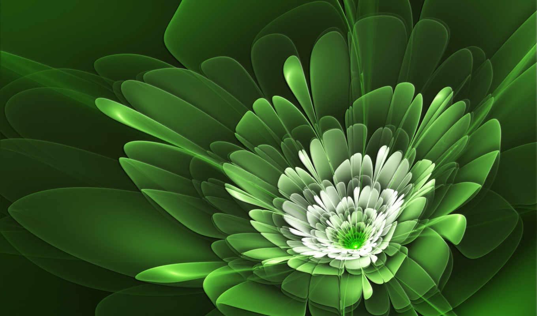 zielony, абстракция, verde, kwiat, цветы, sabro, pulpit, 手机壁纸, grafika, инсерто,