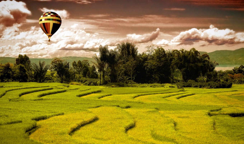 поле, landscape, зелёный, resolution,