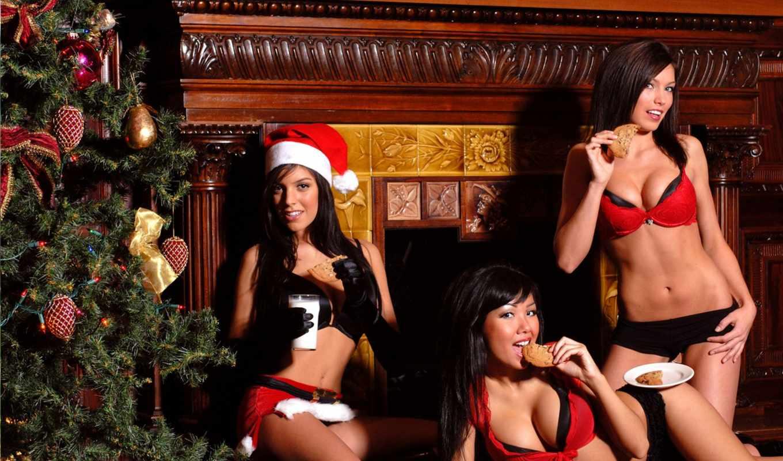 christmas, girls, lingeria, девушка, merry,