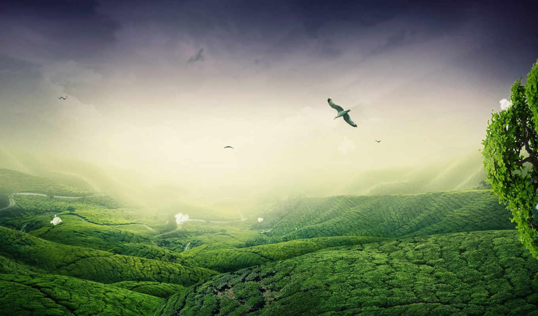 зелёный, landscape, desktop, природа, широкоформатные,