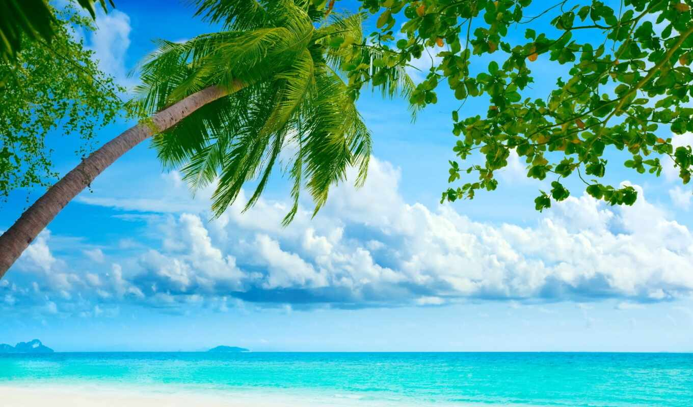 пляж, desktop, free, tropical, resorts,