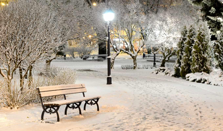 winter, фонари, снег, природа, лампа, свет, скамейка, флот, деревья, вечер,