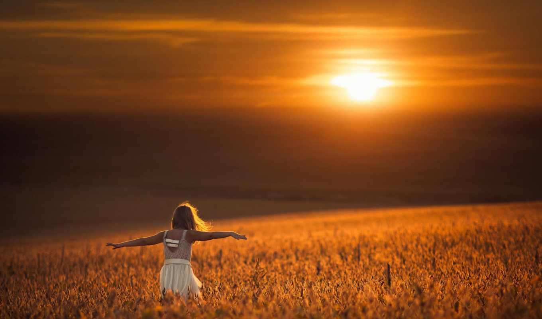рассвет, поле, цветы