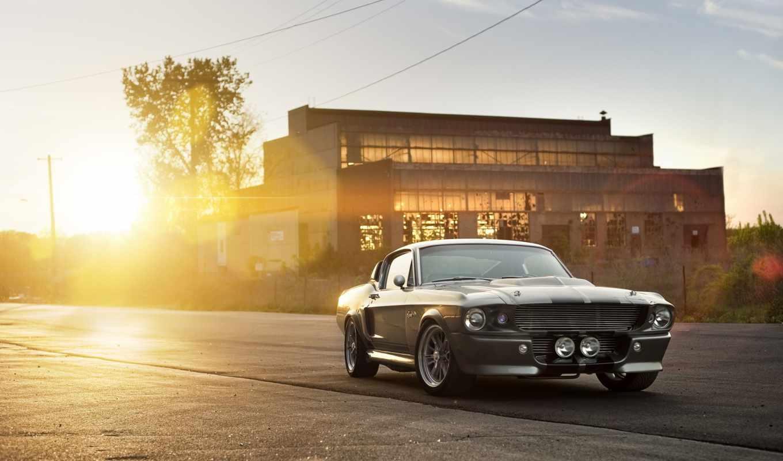car, muscle, ford, янв, машины, shelby, eleanor, комментарии, автомобили,
