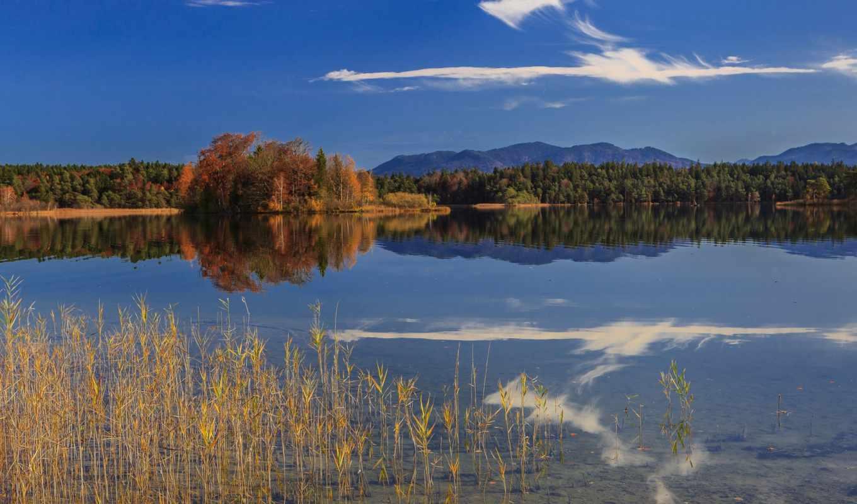 нояб, бавария, германия, пейзажи -, озеро, лес, часть, количество, удивительные,