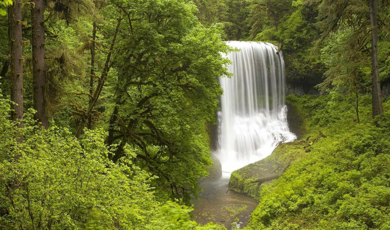 природа, лес, обоях, добавлено, водопад, ago, года,