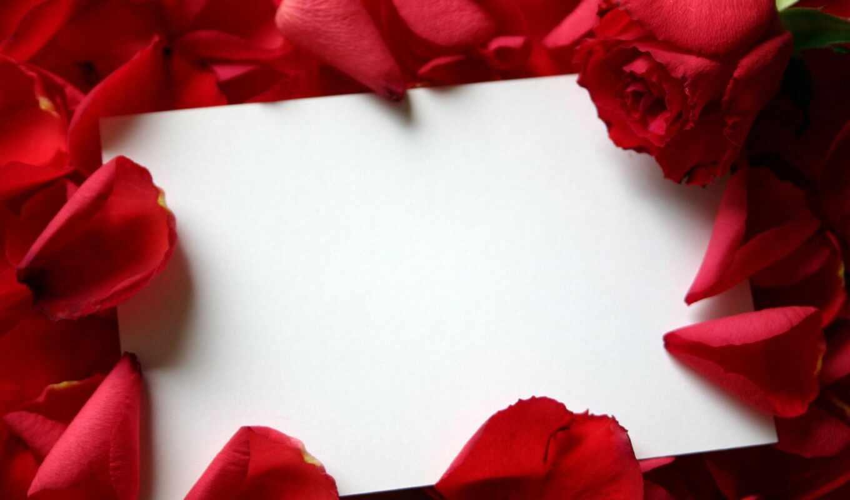 рамки, розы, поздравлений, поздравления, цветов, открыток, рамочка, красиво, оформленные, цветы, растровый,