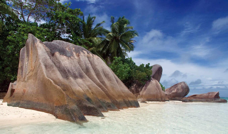 wallpaper, пляж, beach, камни, source, берег, anse, пальмы, argent, море, seychelles, wallpapers, песок, palm, без, природа, обоев, небо, тропики, скала, nature, картинка,