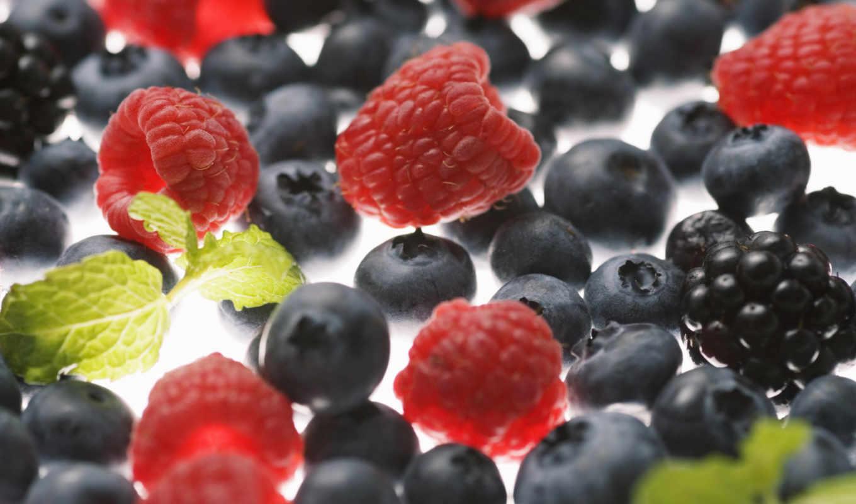 малина, ягоды, черника, ежевика, макро, картинка, картинку,