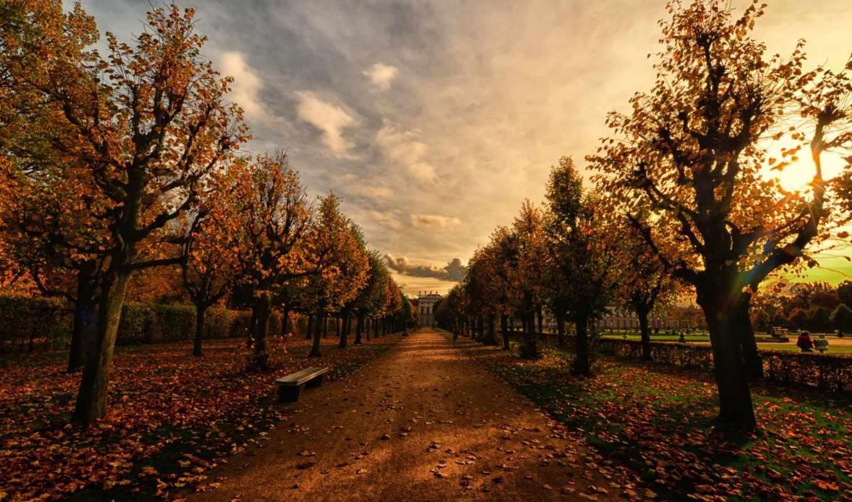 осень, вечер, флот, аллея, скамейка,