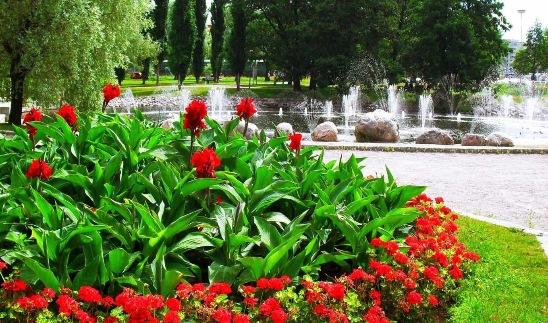цветы, fountain, флот, кровать, скалы, деревья,