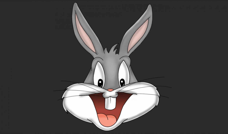 bannii, кролик, looney, tune, cartoon, bugs, bunny, kashkin