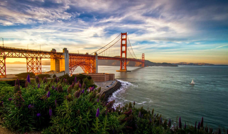 мост, золотистый, gate, san, francisco, free, high,