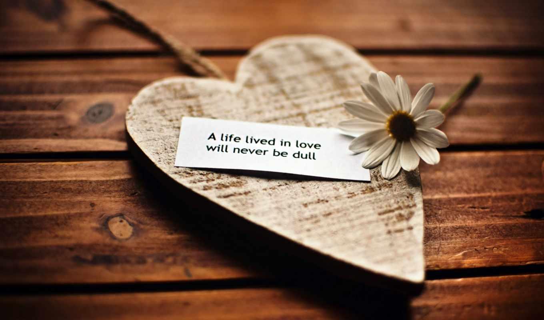 сердце, кулон, древесина, ромашка, цветок, мудрость