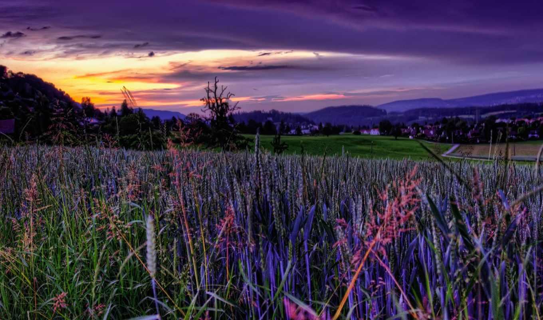 поле, закат, небо, fone, красивых, неба, девушек, красивые, подборка,