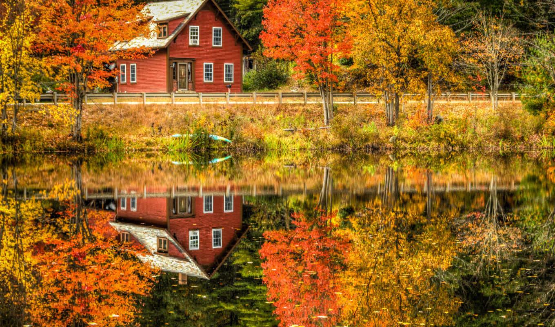 осень, природа, деревя, landscape, лес, река,