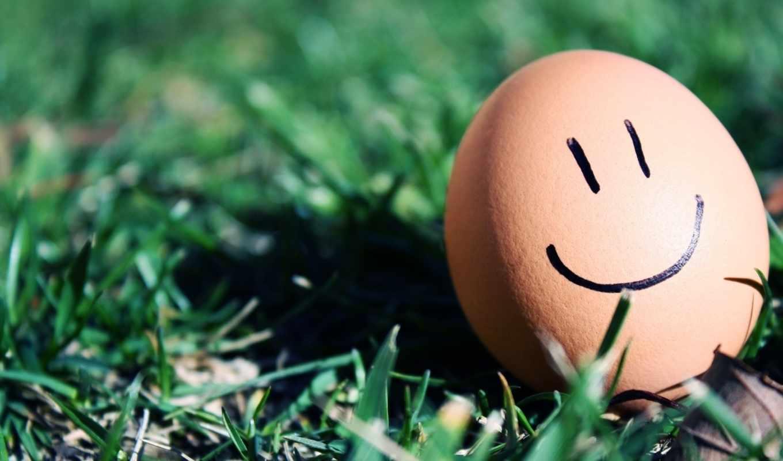 настроение, смайл, травка, улыбка, яйцо, макро, картинка, картинку,