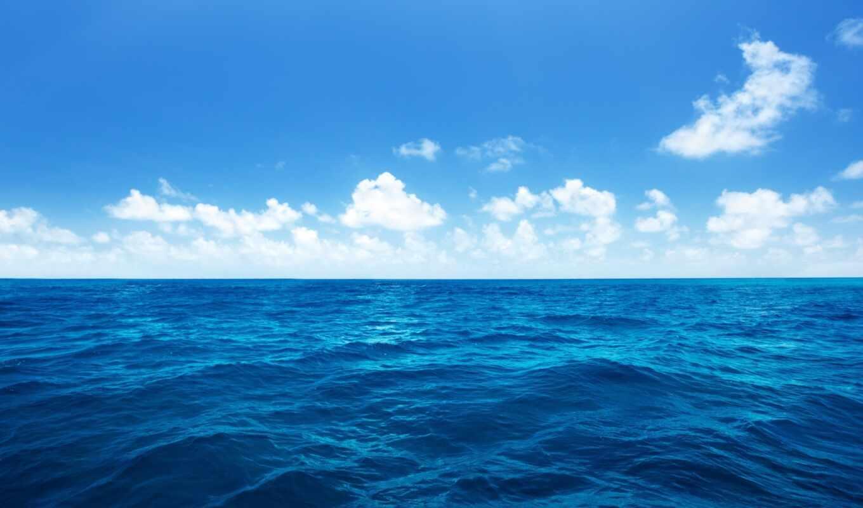 море, clouds, облака, океан, вода, sky, palms, waves, nature, пальмы, волны, горизонт, отливы, бесплатные, tides, белые, голубое, картинка, приливы, синее,