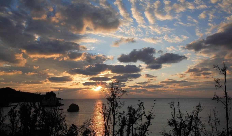 пейзажи, пейзаж, природа, закат, деревья, марта, природы,