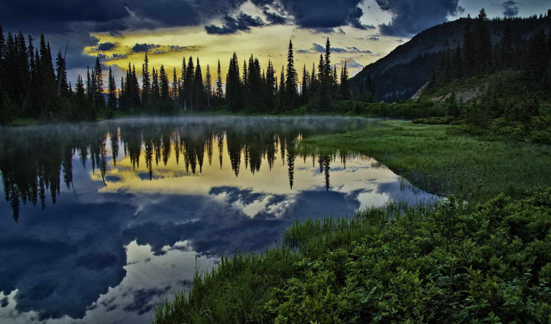 озеро, woods, лес, dark, full, free,