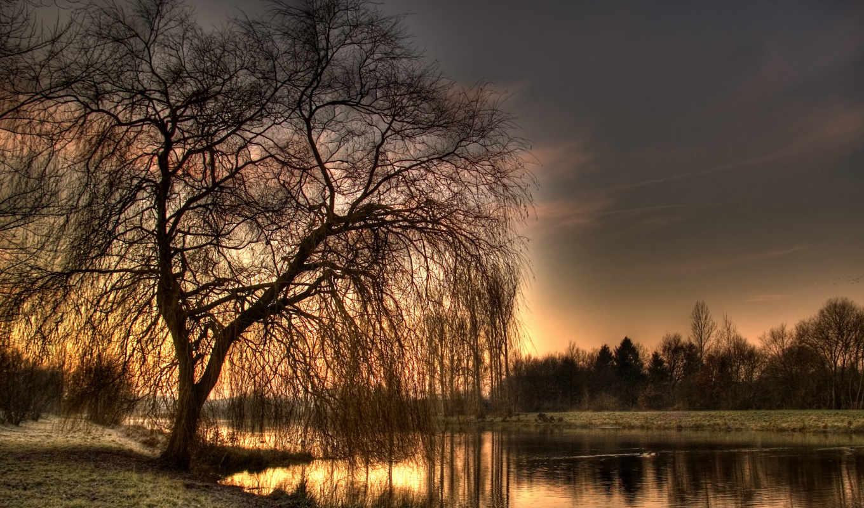 весна, willow, вечер, утро, лес, закат, река, небо, дерево, воскресное, берег,