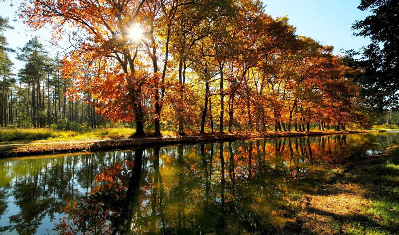пейзажи -, природа, landscapes, reki, rivers,