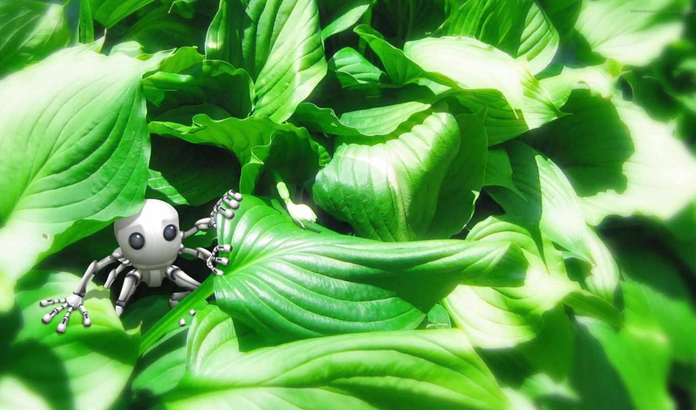 robot, зелень, трава, fondos, игрушка, bushes, зелени, pantalla, leaves,