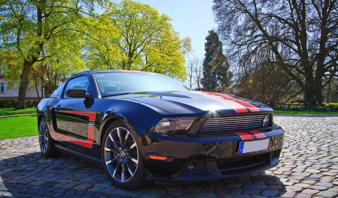 mustang, ford, ago, лет, car, carro, muscle, вектор,