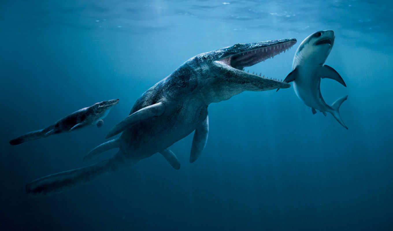 морских, морские, других, целый, наземных, животных, птерозавры, количество, числе, том,