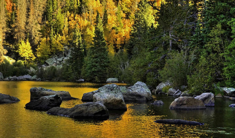 природа, usa, камни, парки, леса, landscape, размере, смотреть, обою, горы,