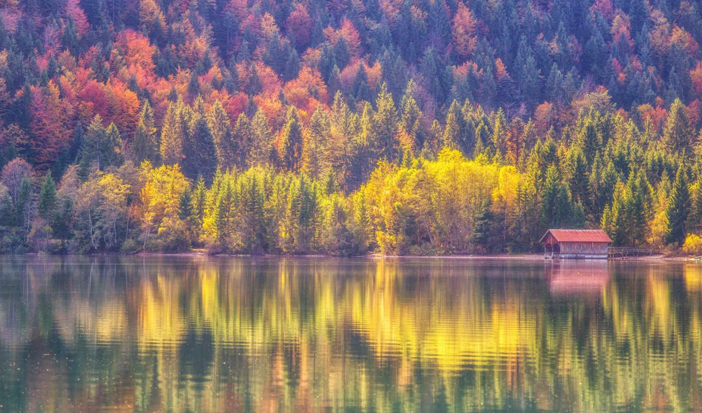 ,дом,лес,озеро,причал,осень,