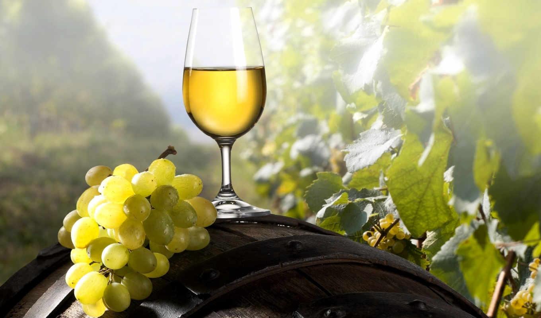 вино, виноград, вина, glass, винограда, бочки, кисточка,