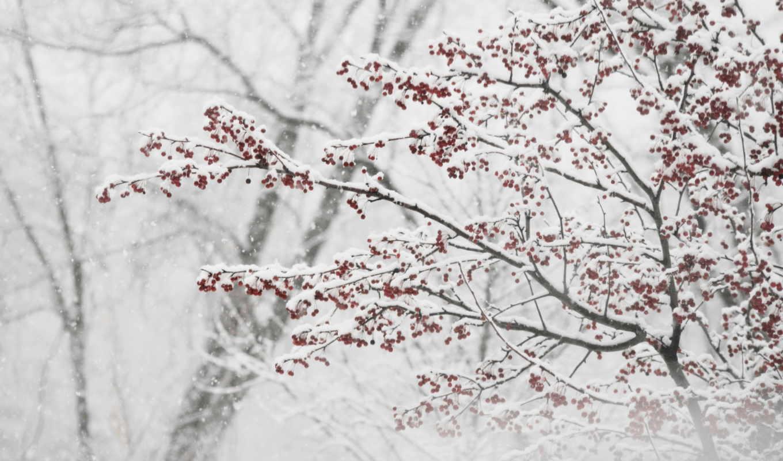 за, снег, thank, окном,