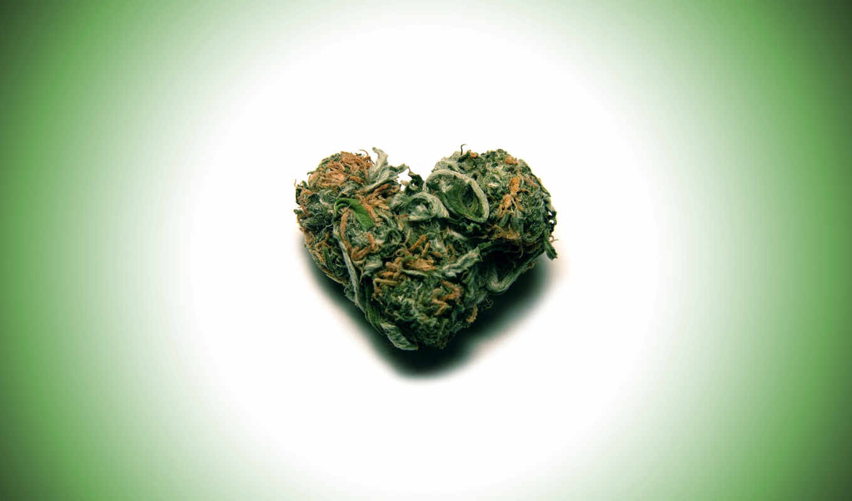 reggae, marijuana, android, blahblah, given, vampirefreaks, thanks, received, likes,