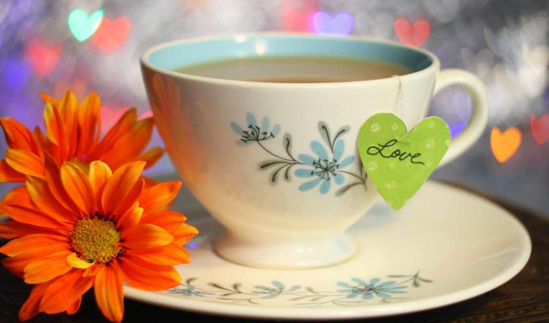 цветы, чая,