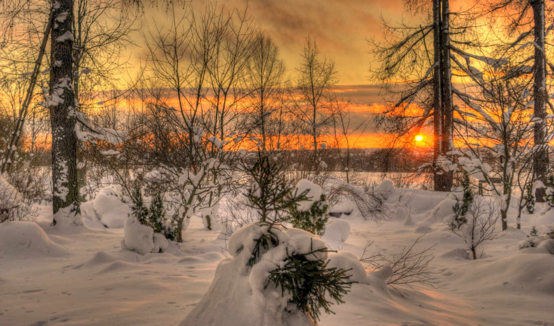 закат, winter, небо, sun, природа, oblaka, landscape, деревя, картинка,