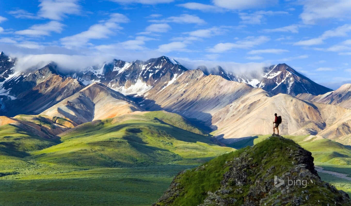denali, park, national, аляска,