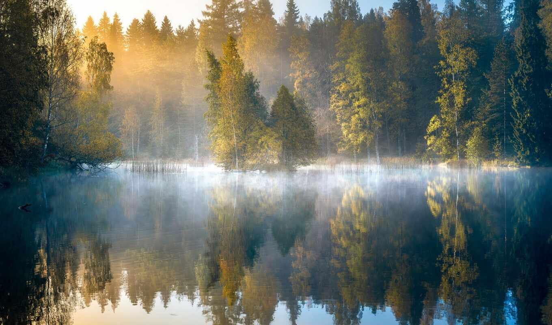 озеро, осень, туман, лес, дерево, фото, рассвет, fond, финляндия, lac, утро