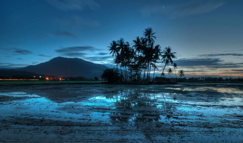 malaysia, вечер, огни, пальмы, джерай, закат, природы, trees, свет, гора, прекрасными, уголками, palm, во, берег, blue, время, water, clouds, sky,