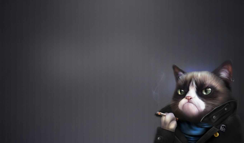 кот, angry, grumpy, art, минимализм, сигара, соус, tardar, тюлень