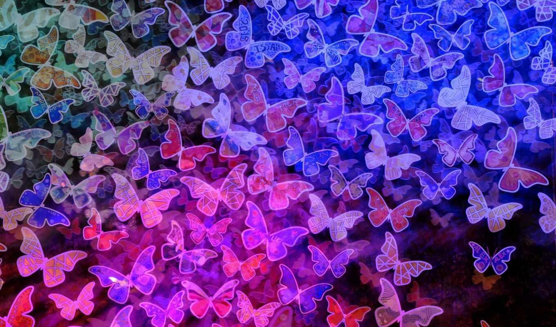бабочка, розовый, purple, school